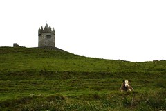 County Clare (abbyef) Tags: ireland countyclare castle tower cow