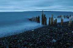 Beach Sticks (noahtaylor3) Tags: ocean beach nature newfoundland sticks nikon rocks d5000