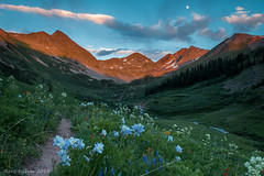 The Wildflower Capital of Colorado (Pulver41) Tags: flowers sunset mountains landscape colorado hiking backpacking rockymountains columbine wildflowers wilderness crestedbutte gunnisonnationalforest maroonbellssnowmasswilderness rustlersgulch rustlergulch
