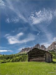 Dolomiti - Passo Gardena (Luigi Alesi) Tags: italia italy alto adige sudtirol cal badia gardena passo paesaggio landscape scenery cielo sky nuvole clouds erba grass verde green nikon d750 raw