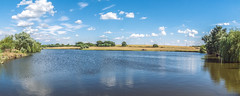 Summer on the Countryside (Alex Demich) Tags: summer countryside ukraine pond lake water surface shore shores trees tree willow sky clouds cloudy outdoor travel reflection landscape nature panorama white blue green