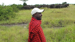 Moses (davidthompson444) Tags: guide safari uganda national parks elephants