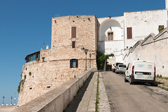 IMG_7744 (jaglazier) Tags: 13thcentury 13thcenturyad 15thcentury 15thcenturyad 16thcentury 16thcenturyad 17thcentury 17thcenturyad 2016 8216 apulia arches architecture august buildings castles centrostorico cittabianca copyright2016jamesaglazier fortresses forts gates hilltowns houses italy newgate oldtown ostuni portanuova ramps spanish towers urbanism walls whitecity circuitwalls cities roundtowers streets streetscapes whitewash whitewashed puglia