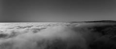 Camanchaca   Parque Nacional Pan de Azcar (Jos L.Gutirrez) Tags: nikon nature d7100 naturaleza parque park fauna flora landscape paisaje panorama desert desierto atacama chile photo foto fotografia photograph picture animals wildlife salvaje bw bn