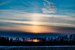 (Jori Samonen) Tags: sunset winter snow field trees sky clouds viikki helsinki finland canon efs 55250mm f456 is sony ilce3000