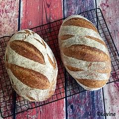 Lichtbruin landbrood (Levine1957) Tags: brood bread zuurdesem sourdough