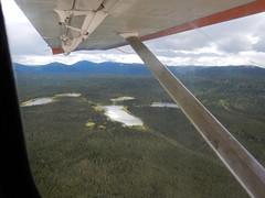 Scenes of the tundra below