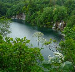 Plitvice, Aussicht auf die Wasserflle (duqueros) Tags: kroatien croatia hrvatska plitvicerseen see lake wasserfall waterfall nationalpark nacionalniparkplitvikajezera plitvice natur nature duqueiros