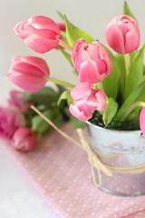tulipani (stgio) Tags: pink flower tulip springtime springflower