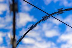 da Série: Surtos Fotográficos (olho wodzynski) Tags: curitiba arame farpado fotográficos surtos
