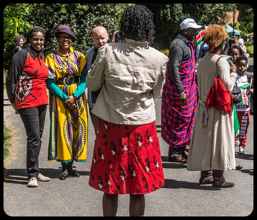 I HAD A WONDERFUL DAY AT AFRICA DAY 2015 [FARMLEIGH HOUSE IN PHOENIX PARK]-104506