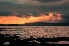 Sunset Over Belfast Lough. (Photographer Dave C) Tags: sunset sea sky sun seascape colour beauty weather canon landscape photography awesome bangor stunning photographerdave northernirealnd welltravelled belfastlough twitter creativeart canon400d mymindseye mygearandme instagram