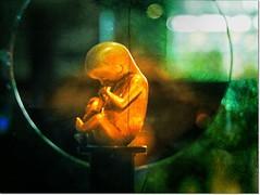 CITÉ DES SCIENCES ET DE L'INDUSTRIE (PARIS) (Sigurd66) Tags: paris france frankreich îledefrance frança párizs francia villette parís parigi chatelet páras républiquefrançaise paryż lutetia frantzia paříž paries francja pariisi pariis citedessciences pariz paríž parizo parísi parīze paryžius paräis frañs paryzh bārīs pariž parquevillette