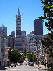 San Francisco (FRAUSCHNERT) Tags: sanfrancisco transamericapyramid architektur wolkenkratzer skyline ausblick pflanzen kalifornien sommer hitzewelle roadtrip rundreise mietwagen unterwegs highlights usa amerika westkste hitze heis urlaub frauschoenert reise highwaynr1