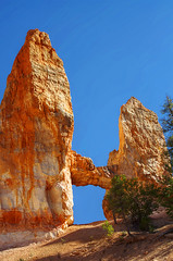DSC_0635 tower bridge hdr 850 (guine) Tags: brycecanyon brycecanyonnationalpark rocks hdr qtpfsgui luminance trees plants