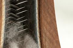 Wool Carder (menegue) Tags: macro wool closeup cards bokeh fiber fiberarts macromondays woolcard