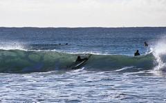Into the Waves [Nikon F5 Film] (Aviator195) Tags: kodak kodakfilm kodakektar kodakektar100 ektar ektar100 ektarfilm film filmphotography filmisnotdead filmphotos filmscan filmphoto nikon nikonfilm nikonf5 f5 epson epsonperfectionv550 epsonv550 v550 highquality highqualityfilmscan surf surfing surfers wave waves ocean beach manly manlybeach queenscliff queenscliffbeach northernbeaches australia surfboard surflife surfculture