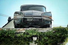 Citroen DS Graveyard (gemeiny) Tags: france graveyard car classiccar citroen rusty oldtimer gemeiny