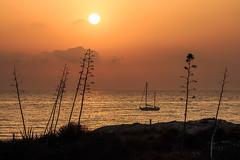 Amanecer en Los Genoveses (Antonio_Luis) Tags: amanecer atardecer sol ocaso playa los genoveses parque natural cabodegata verano vacaciones mediterraneo mar pitas arboles velero barco turismo almeria andalucia