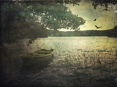 At the lake... (iEagle2) Tags: iphone iphone4 sweden summer lake bohusln boat water bird
