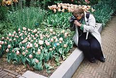 000029 (seustace2003) Tags: keukenhof nederland niederlande holland pays bas paesi bassi an sitr tulip tulp tulipan tiilip tulipa