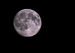 Waxing Gibbous Moon (98% full) (Brian The Euphonium) Tags: moon pentax 98 waxinggibbous ks2 sigma150500 18thjuly2016