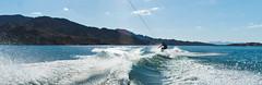 (Liza Williams) Tags: husband traveling travel wakeboarder ansonwilliams handsomehusband wakeboard wake lake water nevada havasu lakehavasu lizawilliams lizacochran lavishperspectivephotography lightroom