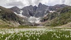 Vignemale. (Olivier Dégun) Tags: pyrénées piquelongue hautespyrénées bigorre 65 montagne canon eos 700d 1585isusm vignemale france oulettes randonnée gaube glacier ngc