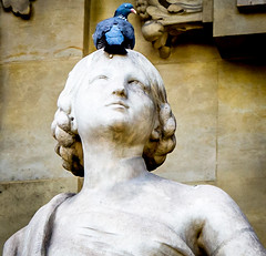 A weekend in Paris: Day One (ajjohnson41) Tags: july2016 paris grandpalais pigeon