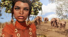 Omo ( Baronne ) Tags: secondlife avatar africa ethiopia omo valley fashion dot makeup maquillage lab genesislab mademoiselle mode model look style lode nature sl 3d french fr african mad river shadow metaverse picture blog blogger portrait piece elephant birdy littlebranch dry grass skye fanatik rock sand sable desert safari ebony chocolate beauty rowne 88 collabor88 gacha boon short hair dress pet zoo animal sky cloud photograph pic south summer t sec