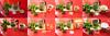 Pfefferminztee (thmlamp) Tags: tea stevie 365 tee peppermint zucker day158 stevia honig pepperminttea kandiszucker pfefferminztee kristallzucker aphotoperday ohnezucker rohrzucker 158365 day158365 mentharotundifolia braunerrohrzucker 06june15 365the2015edition 3652015 rundblättrigeminze 06062015 aphotoperdayproject mithimalajazucker mitstevia mitwaldhonig mitblütenhonig day1583652015 mitkandis mitkristallzucker mitrohrzucker
