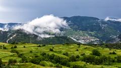 Bulgarije-10 (Martin1104) Tags: natuur yagodina snp bulgarije natuurfotografie natuurreis