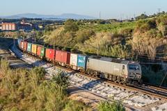 Acciona (evarujo) Tags: barcelona train tren rail railway zaragoza prima alstom canonef2470mmf28lusm freight penedes containers adif cantunis santsadurnídanoia acciona altpenedès canoneos7d canbatista