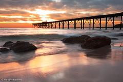 Catherine Hill Bay (renatonovi1) Tags: catherinehillbay beach sunrise jetty pier coalloader wave ocean sea seascape landscape cetralcoast nsw australia