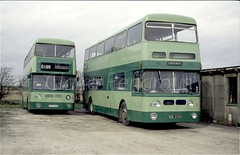 Ex WMPTE Daimler Fleetlines with Jolly Roger (Lady Wulfrun) Tags: acoupleofjollyrogersexwmptedaimler fleetline 3975 soe975h 4560 gog560n fullsutton yard eastyorkshire 23rd march 1994 greeen pocklington schoolbus wmpte