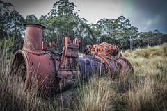 Steam Engine Remains (paulledger81) Tags: steamengine boiler tasmania tarkine australia engine rust relic tank steel iron corrosion historic