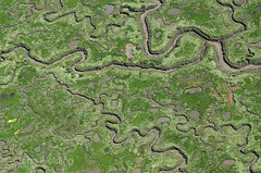 Wells salt marshes (John D F) Tags: norfolk aerialview wells aerial aerialphotography eastanglia wellsnextthesea aerialphotograph northnorfolk aerialimage aerialimagesuk