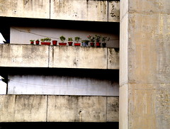_DSC4233 (Parrasgo) Tags: urban streetart art blanco trash graffiti agua reflejo basura rubbish napoli fiore velas napoles escondido lavadoras pobreza secondigliano nascosto neveras camorra scampia gomorra