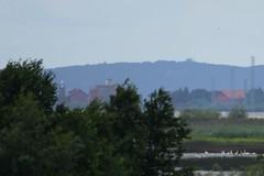 DSC_0521 (sauliusjulius) Tags: rusns sala nemuno delta the neman river landkreis heydekrug memelland