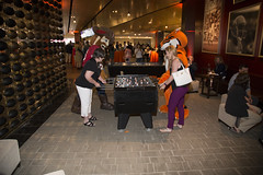 RIT_Levis_AFF-767 (RIT Alumni & Friends) Tags: alex event photo rit seth tigersaffoumado football levis stadium santaclara ca usa