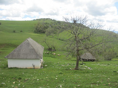 Farm at Vidikovac, Uvac Nature Reserve, Serbia (Paul McClure DC) Tags: uvac naturereserve serbia srbija zlatibor druinie vidikovac sjenica balkans may2016 scenery
