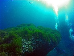 2016_0907_092649_024 (AAcero) Tags: buceo diving almera cabodegata isub