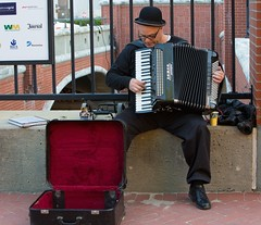 Accordion Entertainment