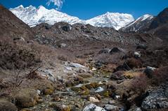 08042015-DSC_7164.jpg (seb.grd) Tags: nepal vacances np npal langtang centralregion