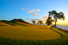 Trees above the design (jeany777) Tags: beauty golf design courses nakedreality