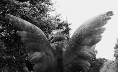 The Grange Boneyard 013 (byronv2) Tags: blackandwhite bw history monochrome cemetery grave graveyard statue angel scotland blackwhite wings edinburgh tomb tombstone carving gravestone boneyard grange edimbourg grangecemetery