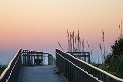 Path to Peace (haddartist) Tags: beach sand dune oceanfront oceanside coast coastal grass seagrass boardwalk path pathway walkway railing bench highlights leadinglines perspective sky clear clarity sunrise dawn morning backlight silhouette calm quiet peaceful serene 68thstreet virginiabeach virginia