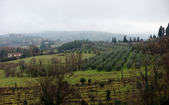 Arezzo Toscana (mappett) Tags: arezzo toscana leica m9 summilux 35mmf14 asph
