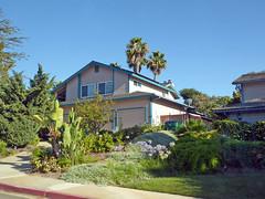 Carlsbad 7-10-16 (33) (Photo Nut 2011) Tags: carlsbad sandiego california