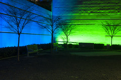 Downtown park at night with bright blue and green walls and park (Jim Corwin's PhotoStream) Tags: seattledowntown absence alone architecture bench benches bluewall boldcolors brightgreen building buildingexterior chairs city citylife citypark citystreet different downtown downtowndistrict downtownpark eerie evening greenwall horizontal illuminated loneliness lonely morninglight mysterious neonlights nighttime nobody outdoors park parkbenches pavement photography streetlight streetscene travel unusual urbanscene